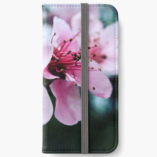 Freshness iPhone Wallet