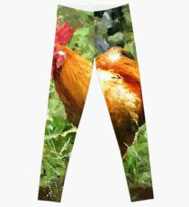 Foraging Chicken Leggings