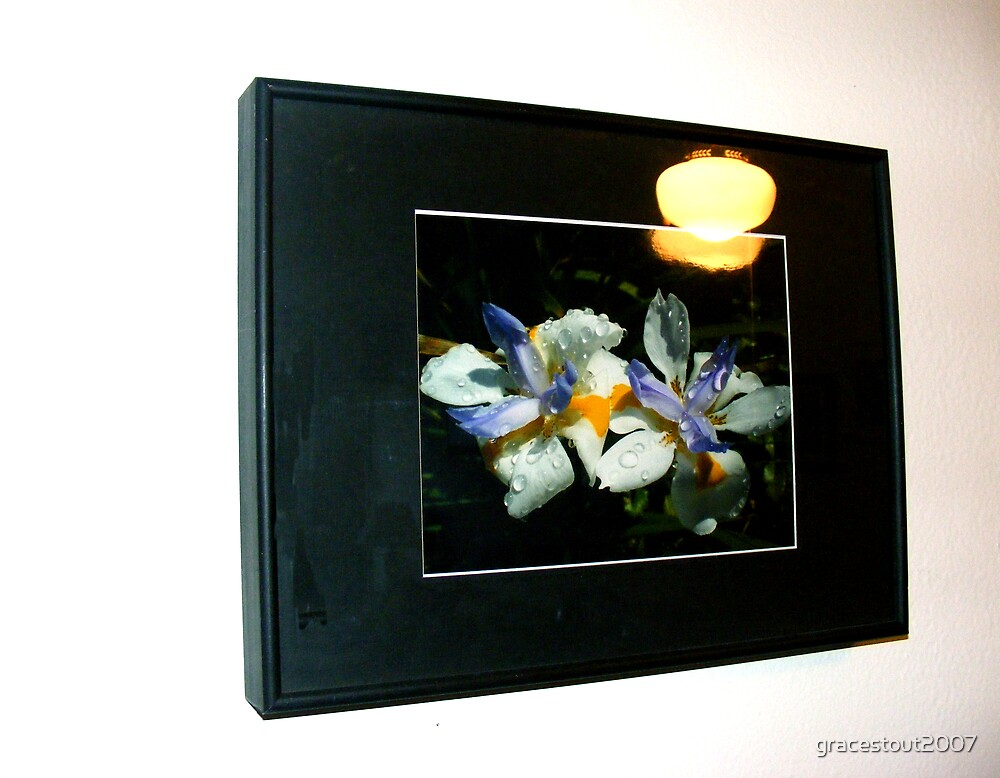 IRIS LAMP by gracestout2007
