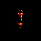 Descending Firework.... Oh I see my life before me! by Lyndy