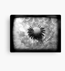 On the Inside - TTV Canvas Print