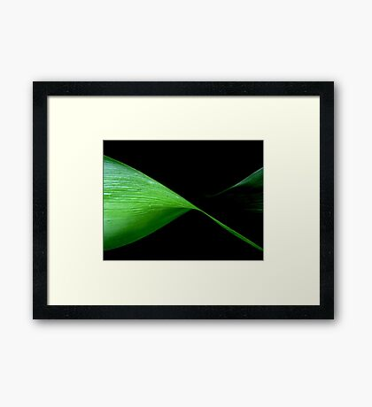 In a Twist Framed Print