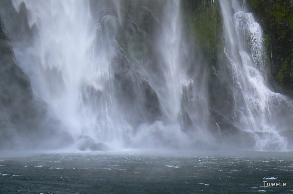Milford Sound Waterfall by Tweetie