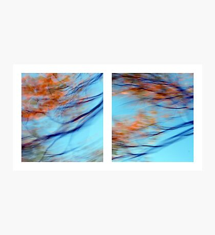 Autumn Impressions - Diptych #2 Photographic Print