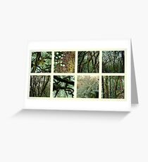 Alpine Rainforest Greeting Card