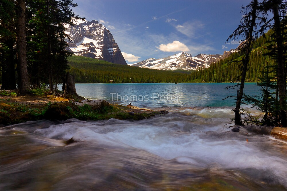 Lake O'Hara by Thomas Peter