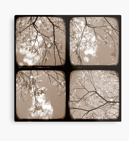 Look Through My Window - TTV Metal Print