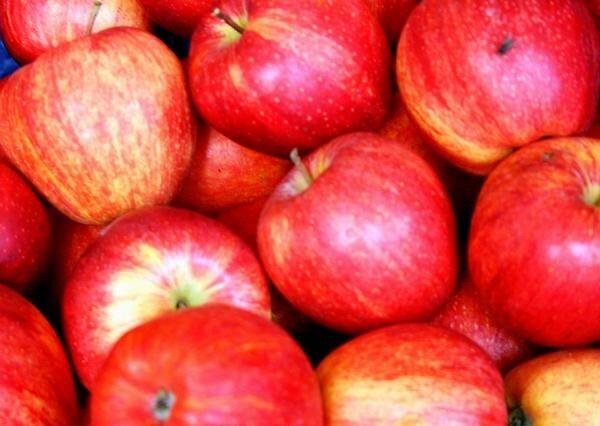 italian apples by audreyaroha