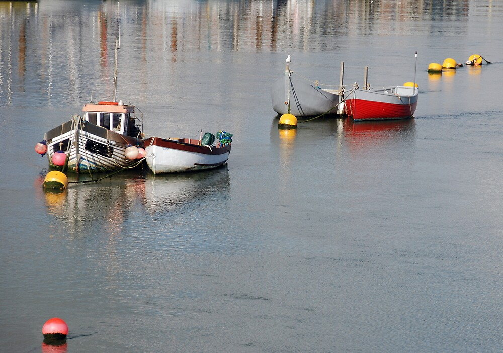 Reflections on the Adur by Barry Goble