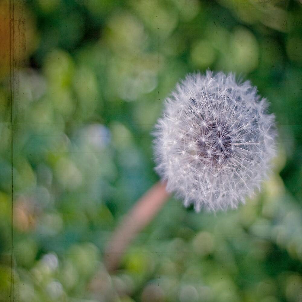 There is hope in dreams ♥ by jodyangel