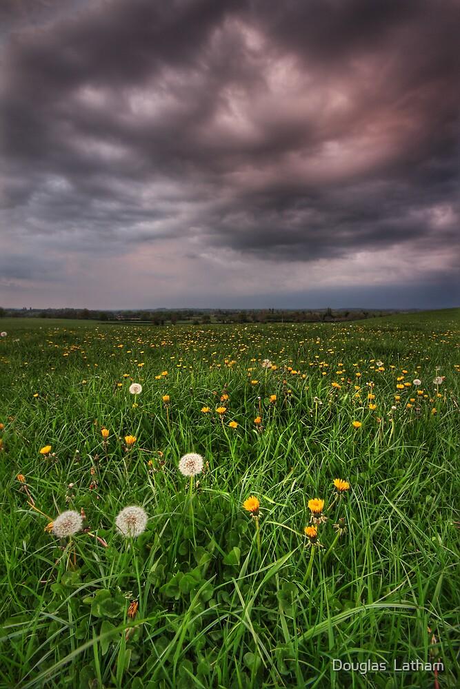 Dandy Field v3 by Douglas  Latham