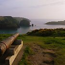 Cornwall: The Canon at Mullion Cove by Rob Parsons