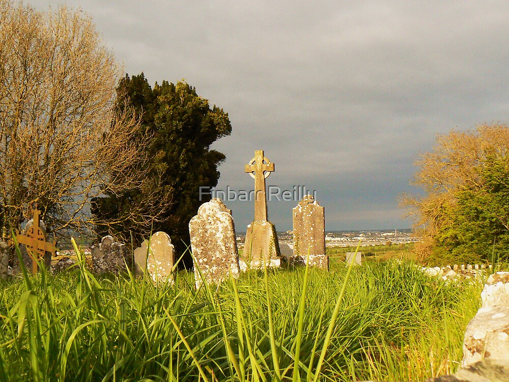 Old Donore Graveyard by Finbarr Reilly