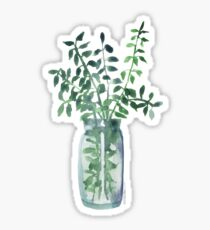 Fresh Eucalyptus Cuttings  Sticker