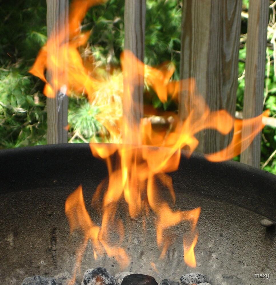 Fire Dancer... by maxy