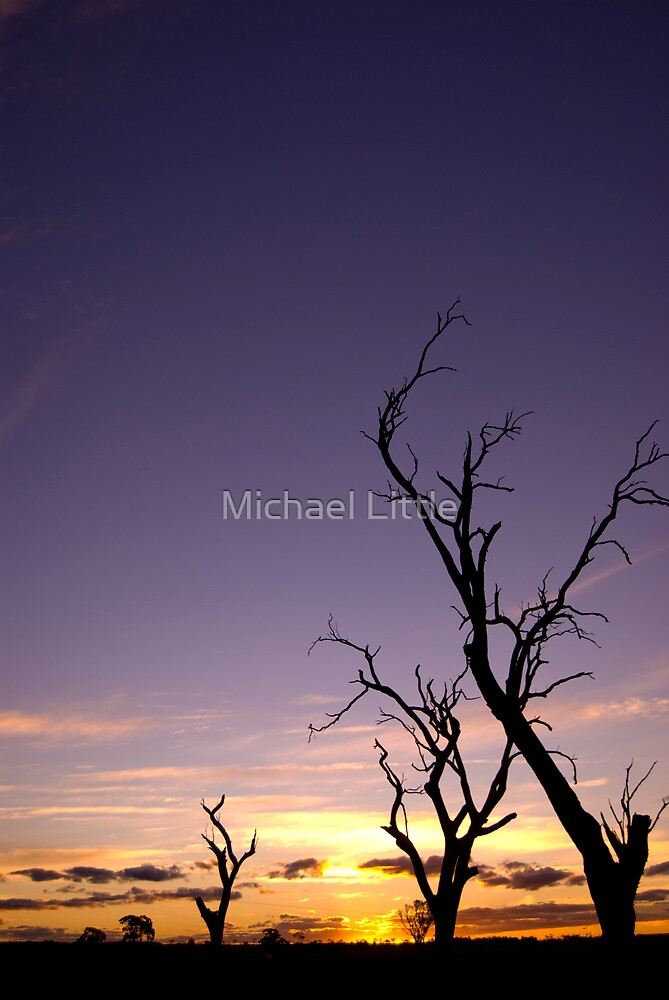 Fading Warmth by Michael Little