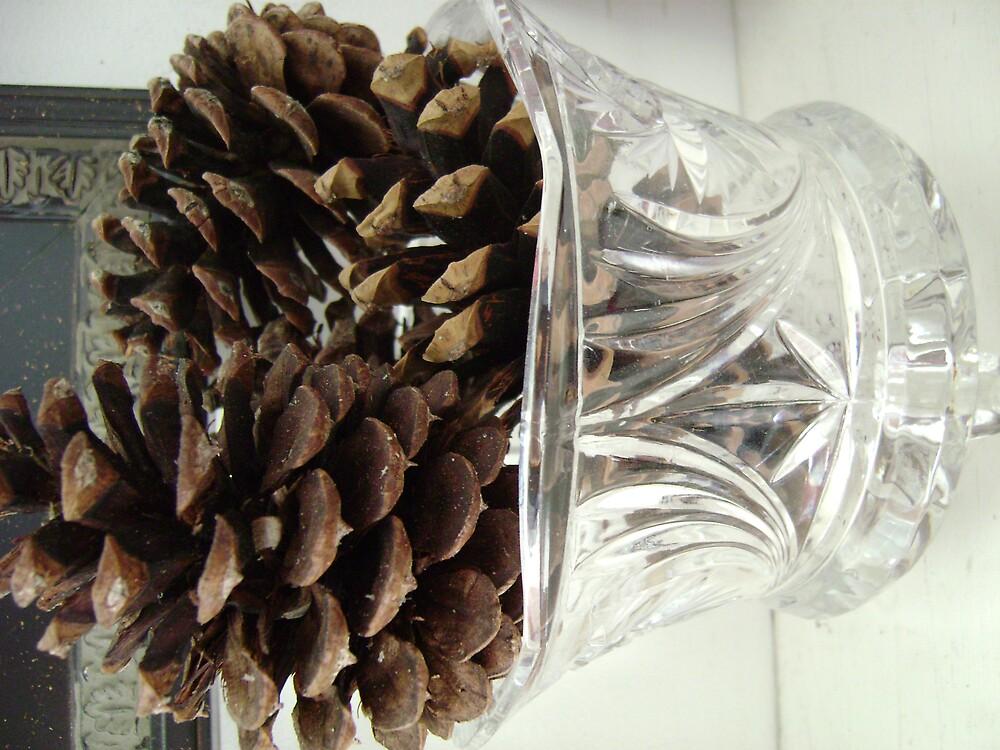 pinecones #2 by SkiFreak