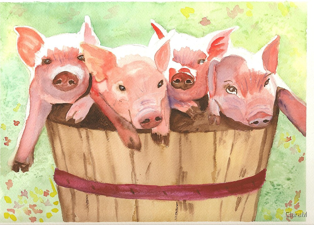 Piglets in a basket by ClaraM