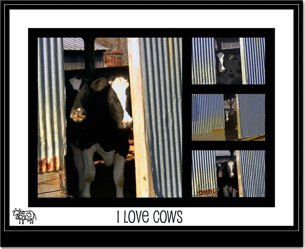 I love Cows by lynell