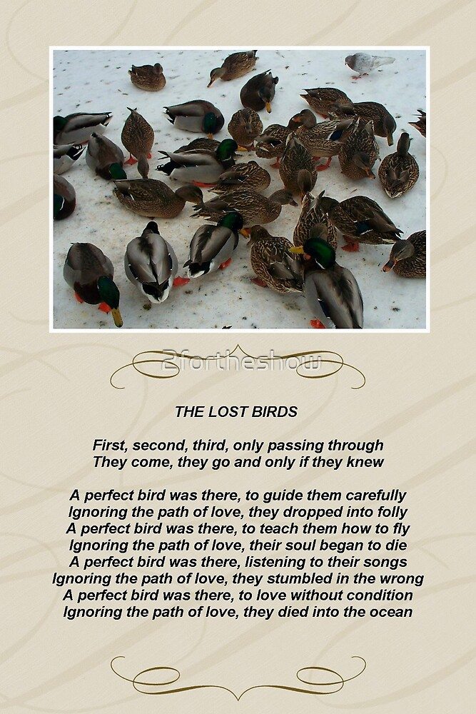 The lost birds by 2fortheshow