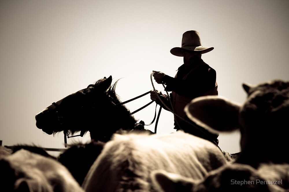 The Catcher - Marla, South Australia by Stephen Permezel