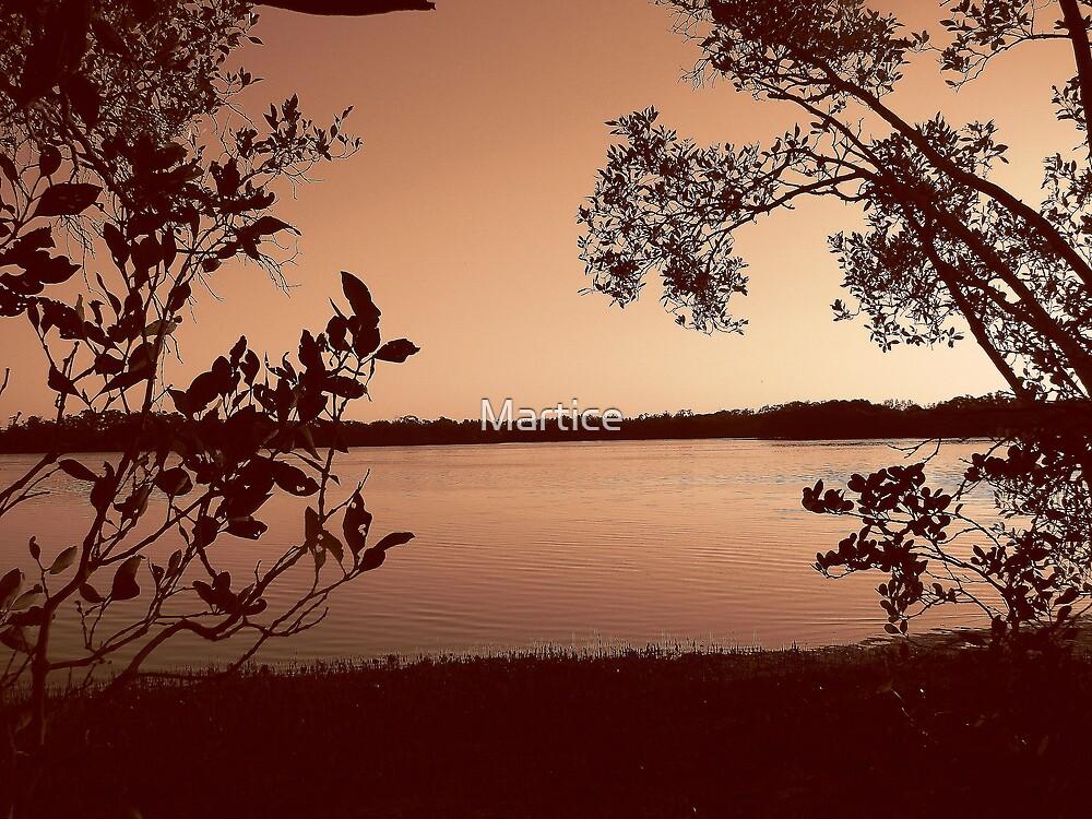 Vintage Mangrove Charm.jpg by Martice