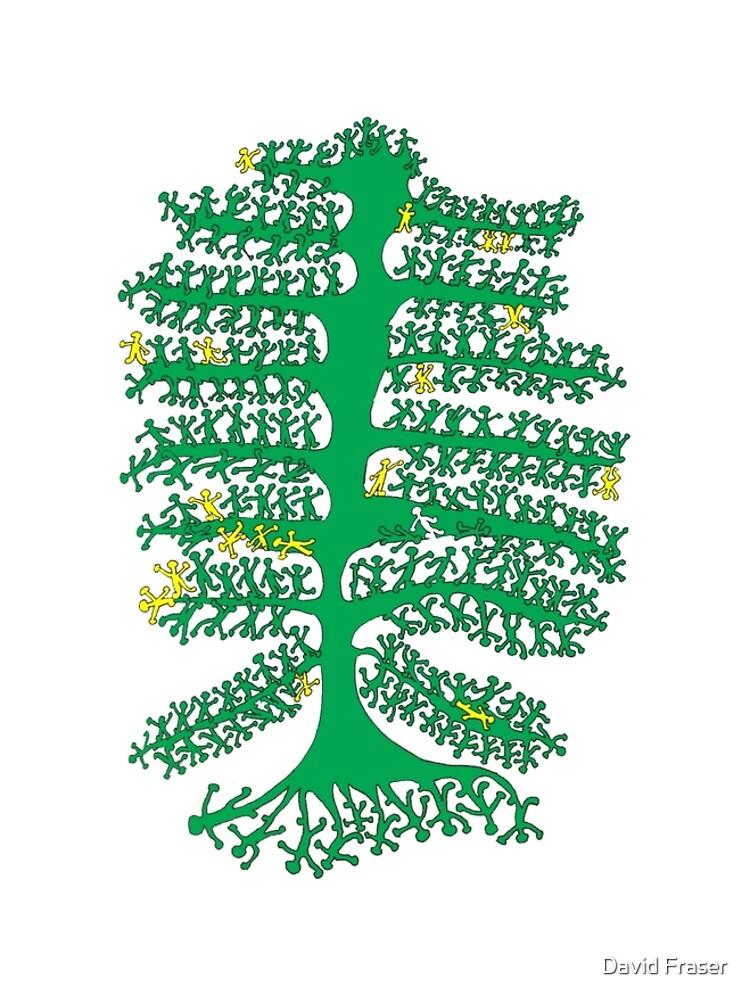 Tree of Life by davidfraser