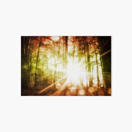 Woodland Sunburst Art Board Print