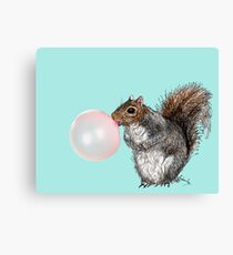 Bubblegum Squirrel Canvas Print