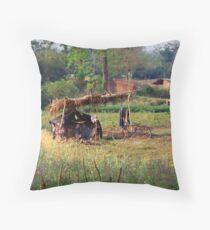 Village hut, Manas, Assam, India Throw Pillow