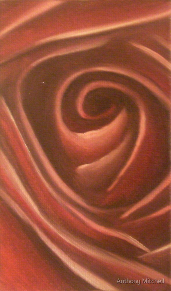 Rose Anthony Mitchell Oil Painting  by Anthony Mitchell