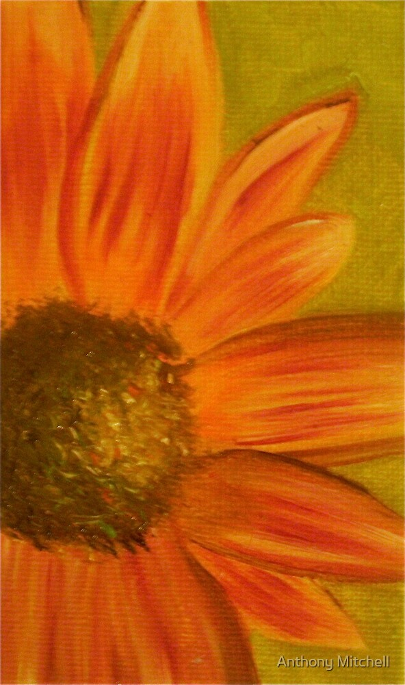 Orange Sunflower Anthony Mitchell Oil Painting  by Anthony Mitchell