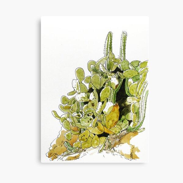 Dessin cactus aquarelle Impression sur toile