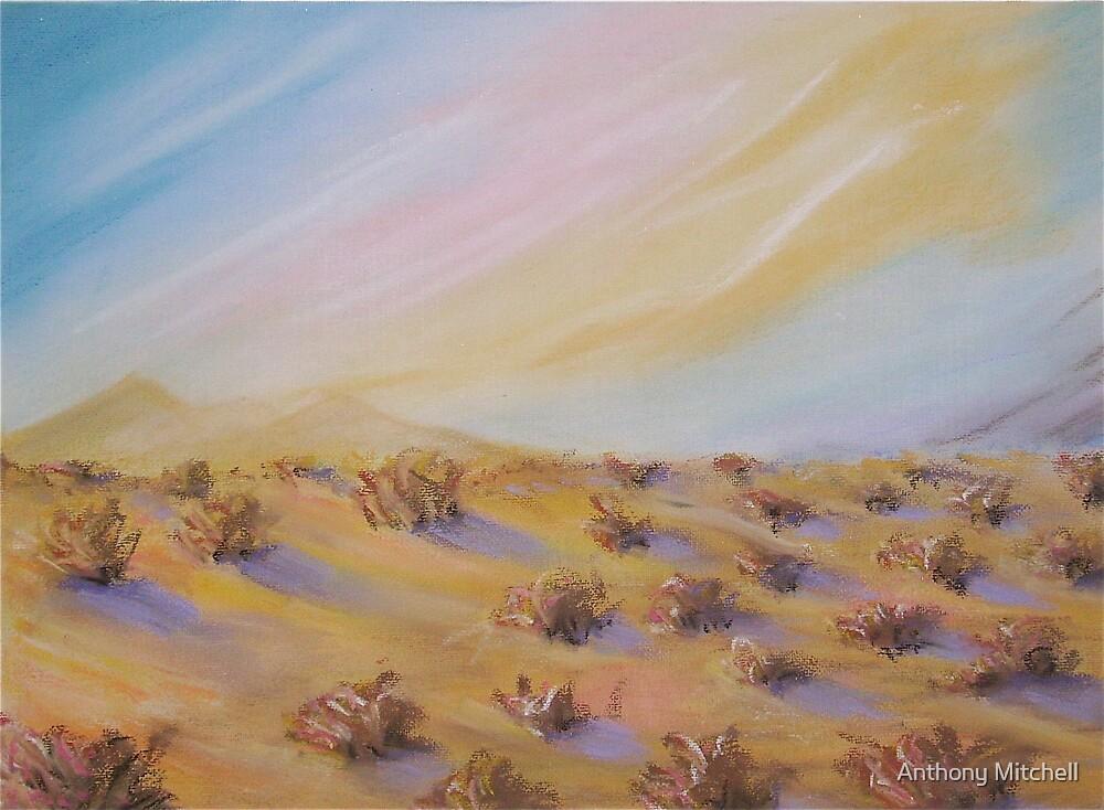 Desert Shrubs Anthony Mitchell  by Anthony Mitchell