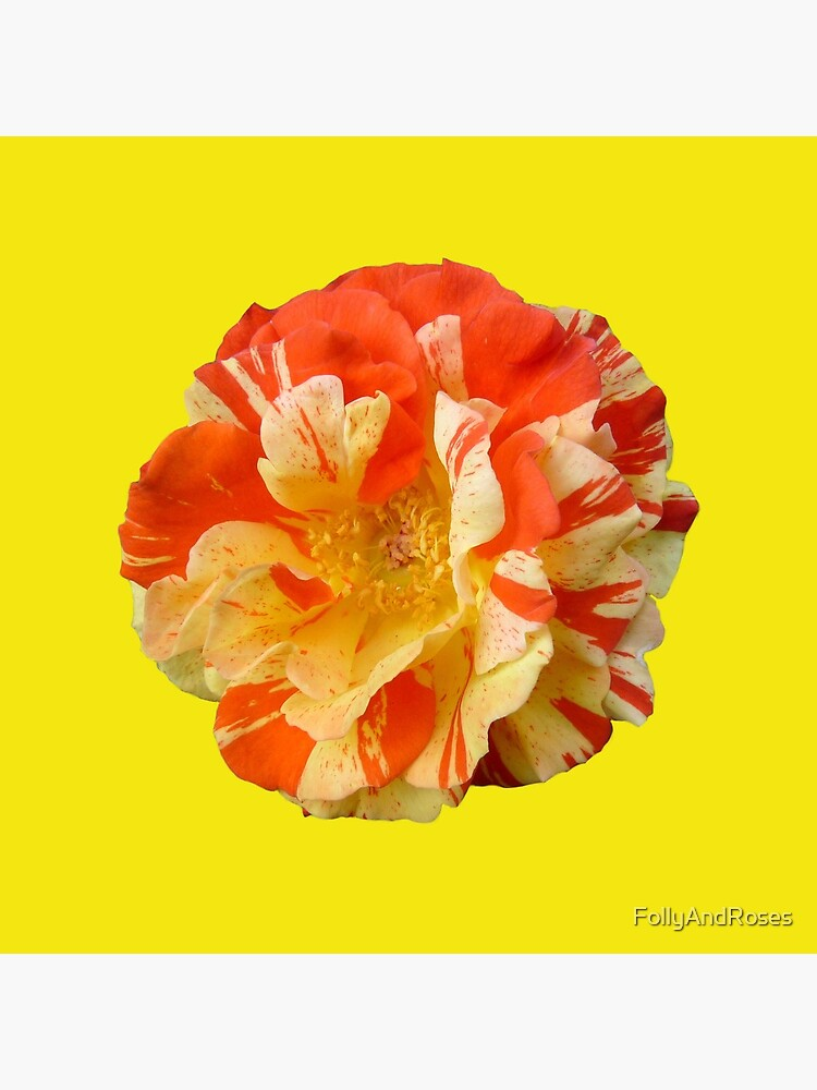 Oranges and Lemons - Yellow is my Happy Colour by FollyAndRoses