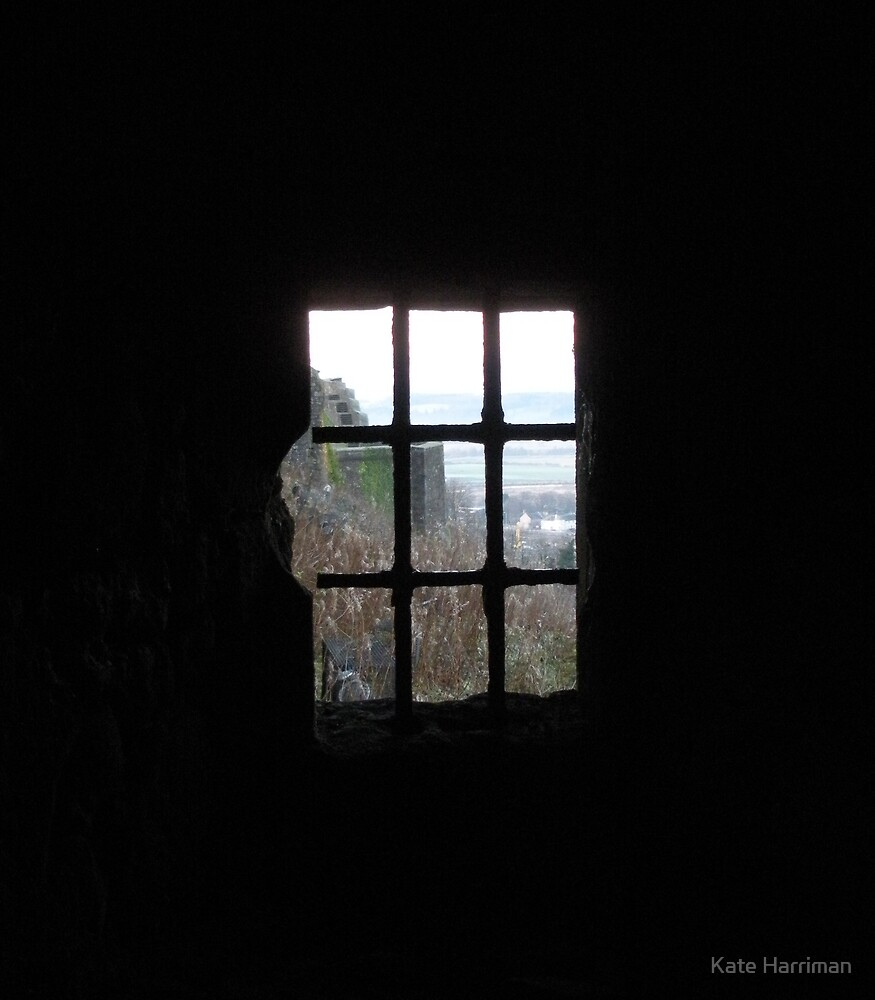 Window to freedom by Kate Harriman