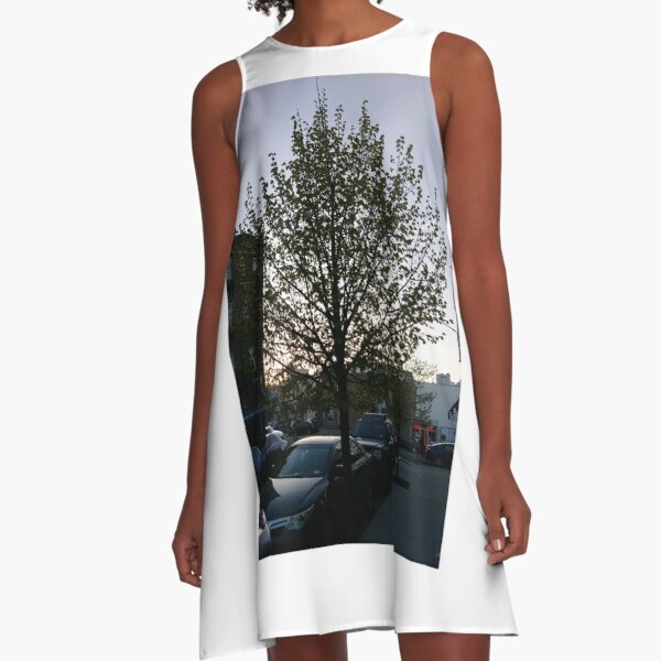 Happiness, Building, Skyscraper, New York, Manhattan, Street, Pedestrians, Cars, Towers, morning, trees, subway, station, Spring, flowers, Brooklyn A-Line Dress