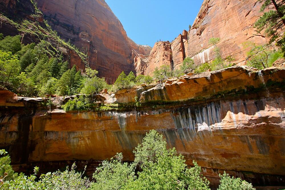Zion Waterfall by krasakala