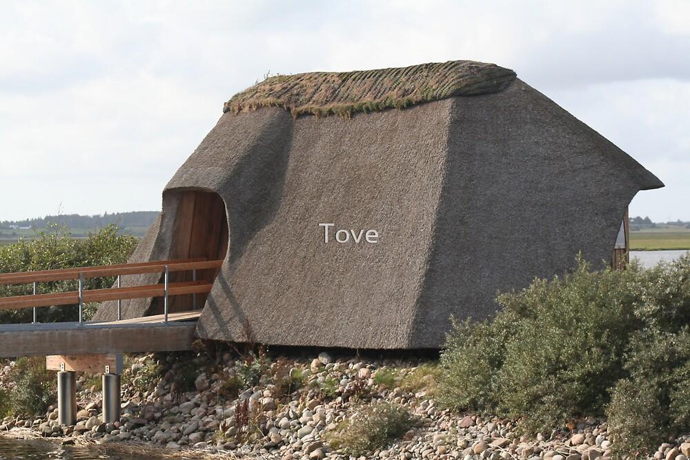 Birdwatcherhouse by Tove