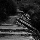 Abandoned Walkway by Derrick Chan