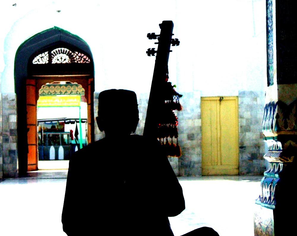 In the land of Shah Abdul Latif Bhitai by holysinner