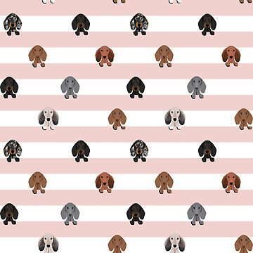 dachshund stripes dog breed doxie gifts by PetFriendly