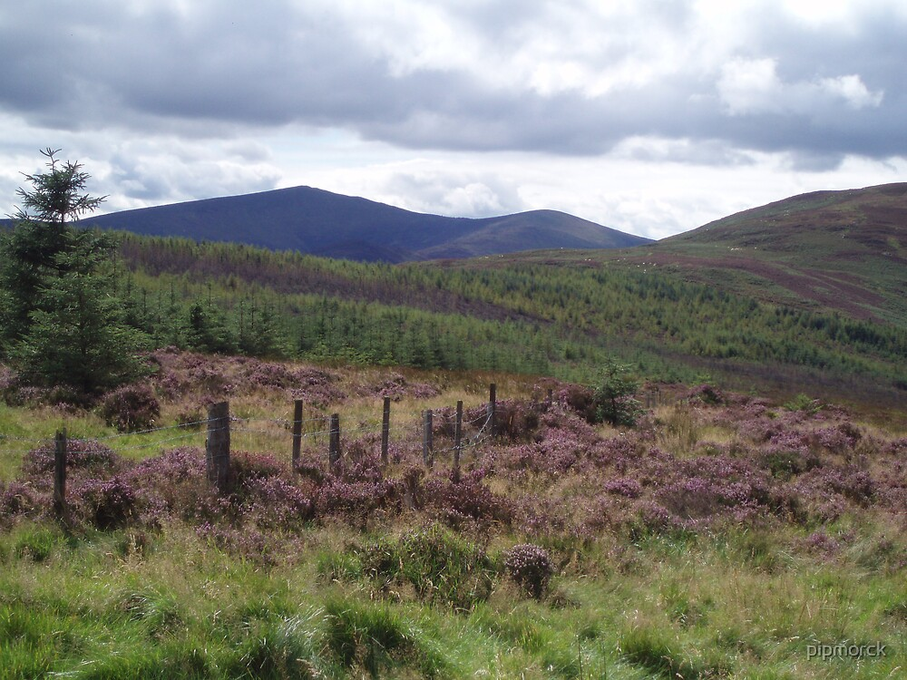 Heather Hill View by pipmorck