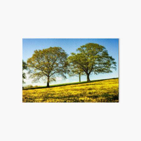 Beautiful Buttercup Meadow Art Board Print