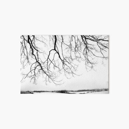 Snow blanket landscape Art Board Print