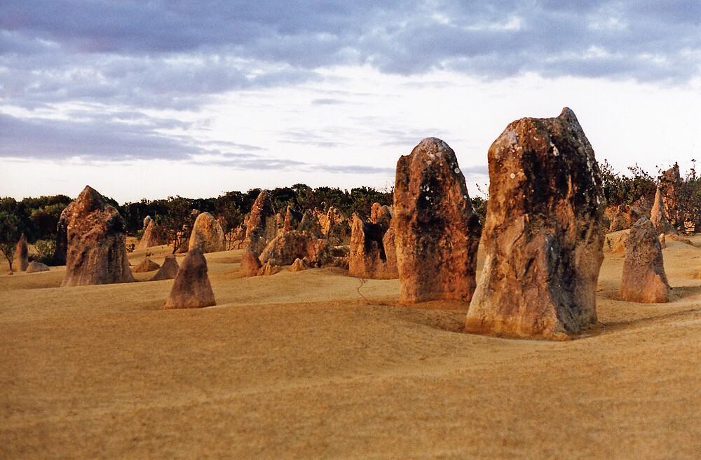 Pinnacles Desert by Christopher Biggs