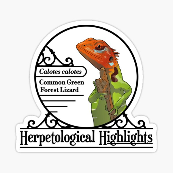 Calotes calotes – Common Green Forest Lizard Sticker