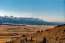The Sawtooth Valley by John Schneider