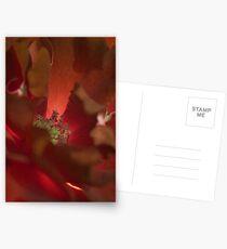 Fire Below Postcards