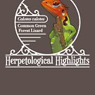 Calotes calotes - Common green forest lizard | White by HerpHighlights